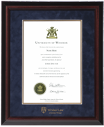 Executive LAW Diploma Frame