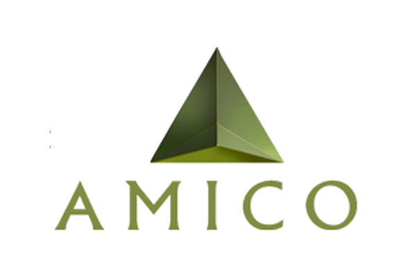 Amico Logo