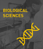 Biological Sciences Program Icon