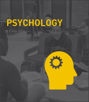 Psychology Program Icon