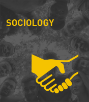 Sociology Program Icon