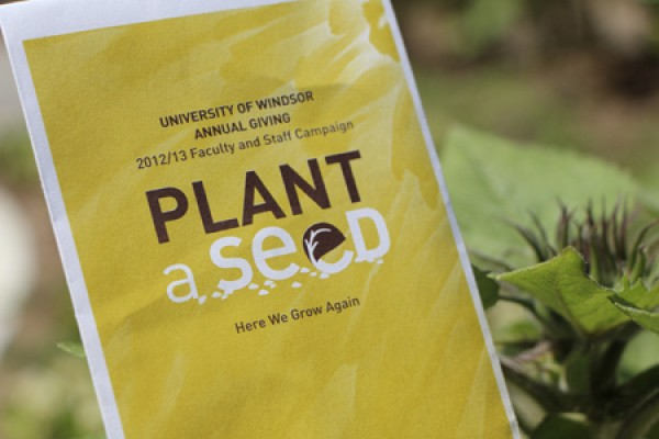 image of invitation to Plant a Seed reception