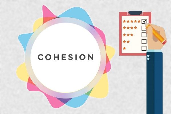 logo: the Cohesion Study