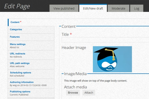 screen grab of Drupal input panel