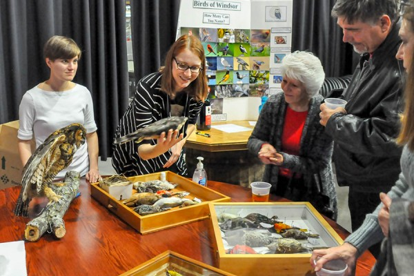 Members of the University of Windsor Avian Taxidermy Club showcase their specimens