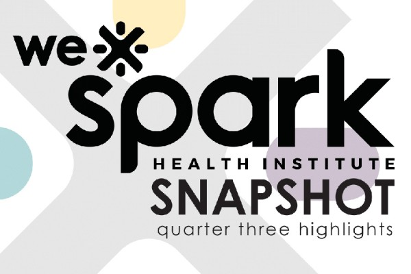 WE-Spark snapshot cover