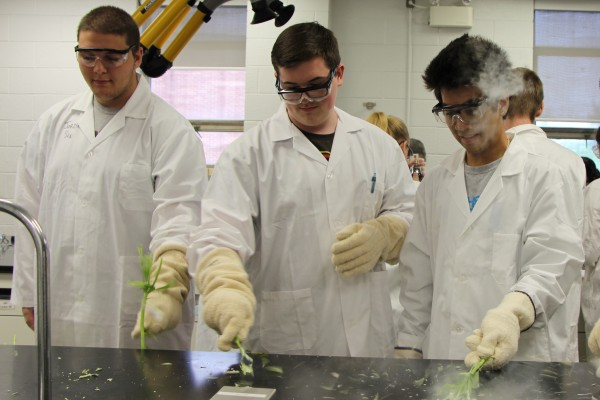 As part of one of the Windsor Science Academy program activities, Sandwich Secondary students Jordan Sin (l.), Liam Salt (centre) and CJ Rempillo (r.) shatter flowers they had flash-frozen by dipping them in liquid nitrogen at -196° C.