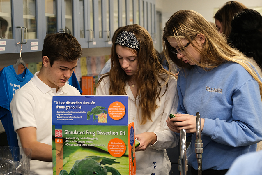 Grade 10 students at LaSalle's Villanova high school look over a simulated frog dissection kit.