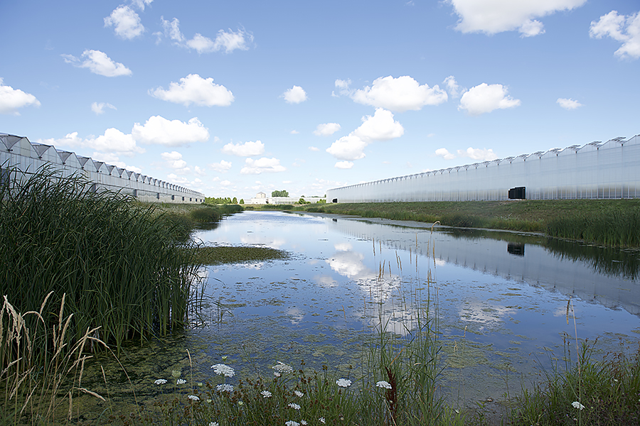 Stormwater retention ponds