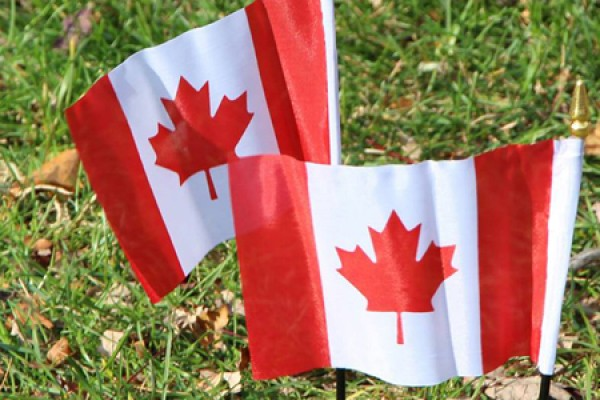 Canadian flags in ground