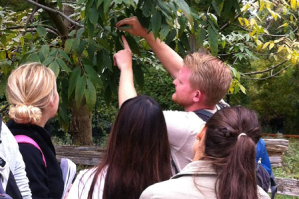 Jeff Buckley shows students how to identify tree species by the veins on their leaves