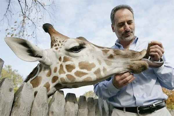 Detroit Zoo CEO Ron Kagan feeding a giraffe.