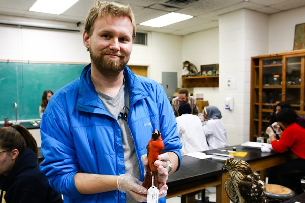 Biology student Aaron Rollins helped prepare museum skins in professor Dan Mennill's ornithology lab this week.