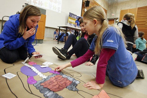 Girl Guides assembling model of human body