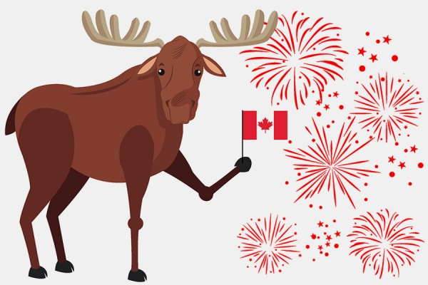 Canada D'Eh poster -- moose holding Canada flag