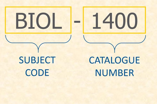 course code graphic