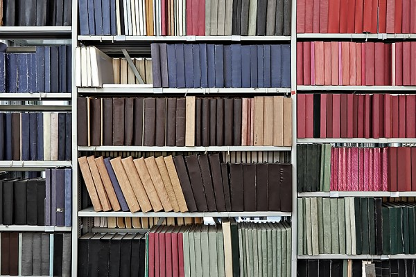 shelves of journals