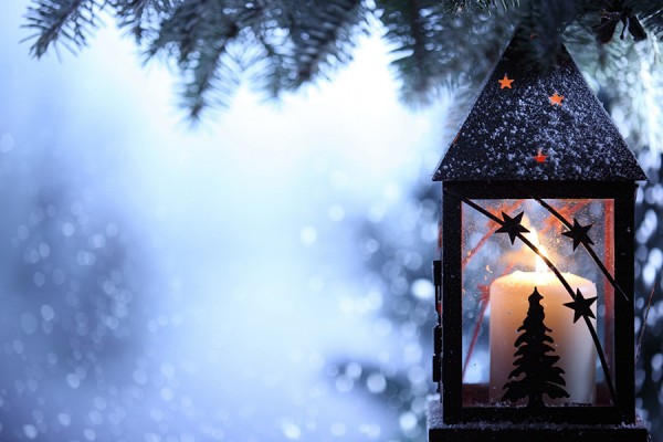 snow-dusted lantern hanging in pine tree