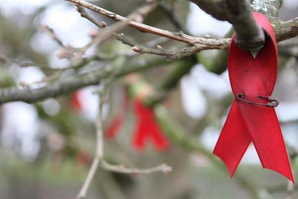 red ribbon pinned to tree