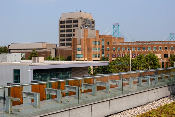 photo of UWindsor campus taken from garden rooftop of CEI