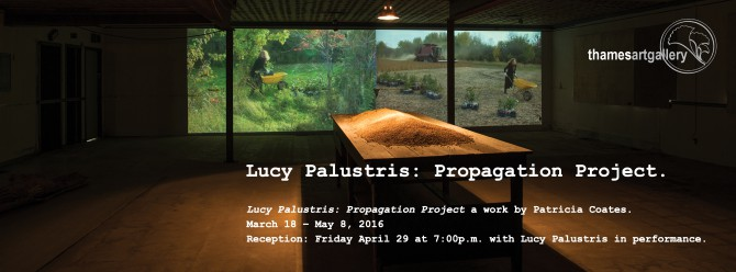 Lucy Palustris: Propagation Project by Patricia Coates, MFA '15