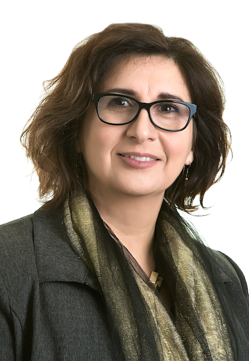 Professor Reem Bahdi, Faculty of Law