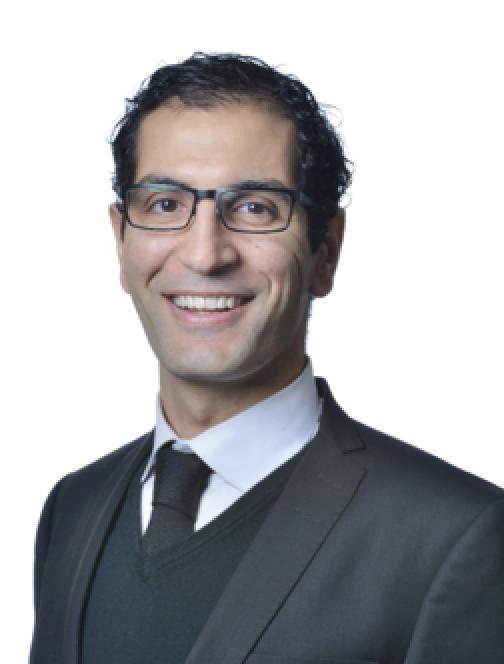 Professor Wissam Aoun, Faculty of Law