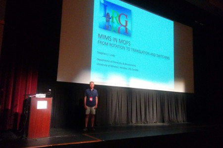 Dr. Loeb lecturing at Telluride Conference