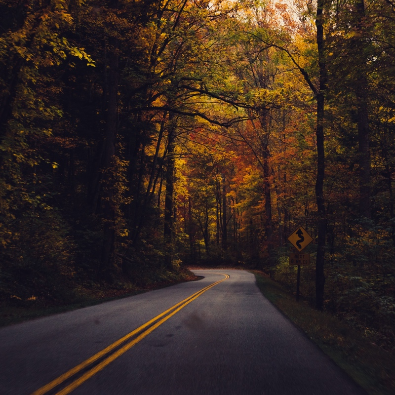 Stock photo of long, winding road in an autumnal scene.