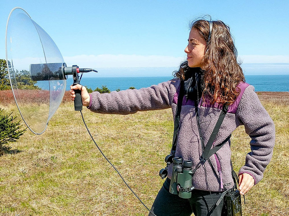 Ines Moran records the acoustics from the Savannah Sparrow on Kent Island in this handout photo.