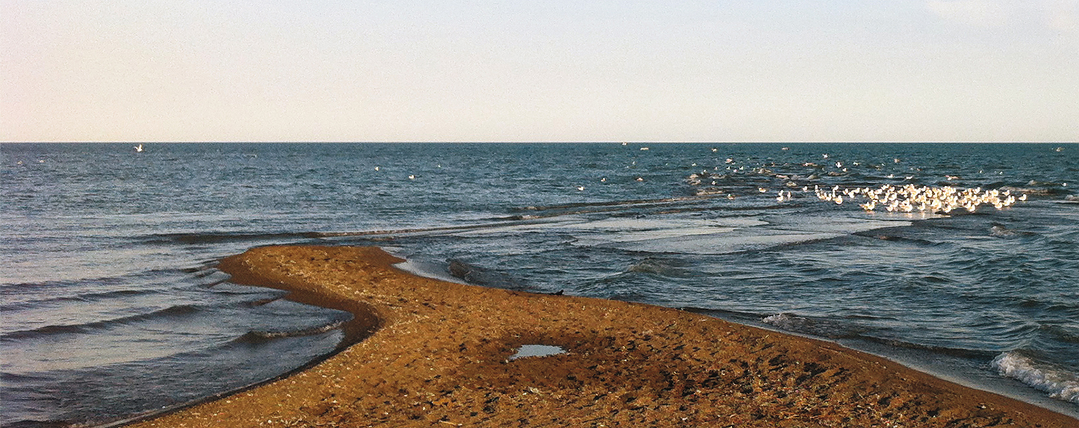 tip of Point Pelee