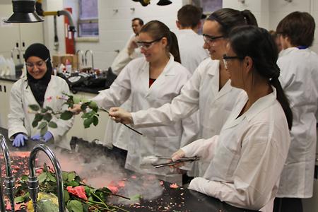 students freezing flowers