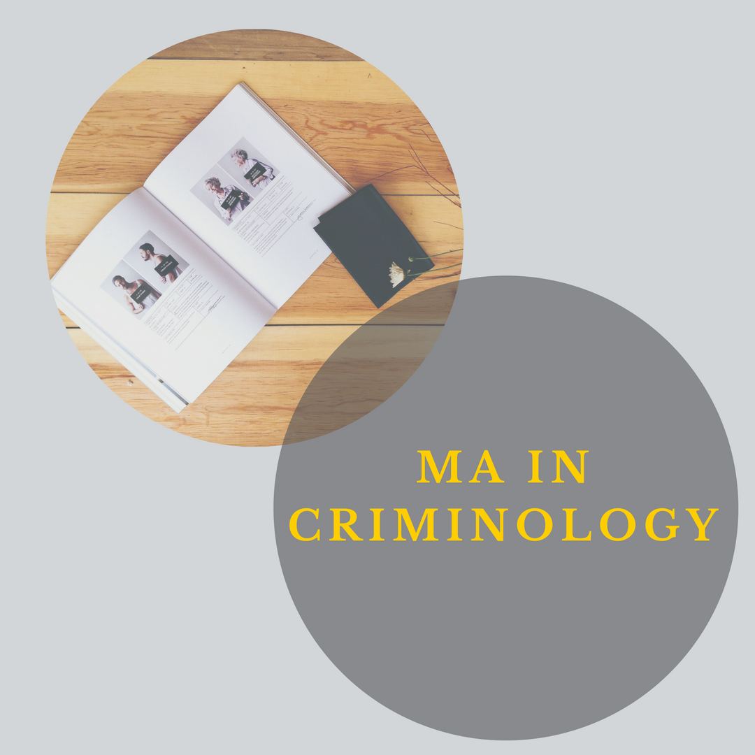 MA Criminology Graphic link