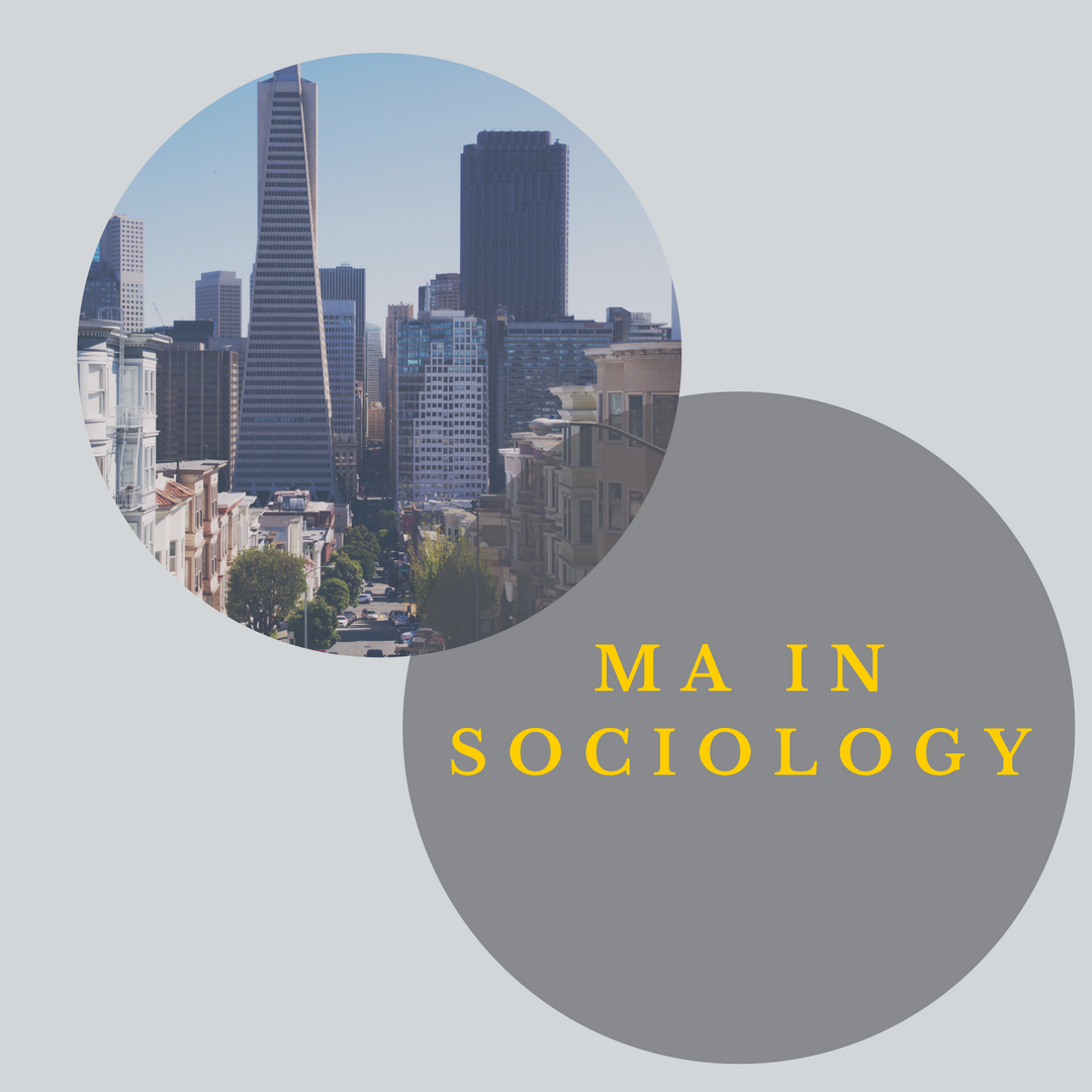 MA Sociology Graphic link