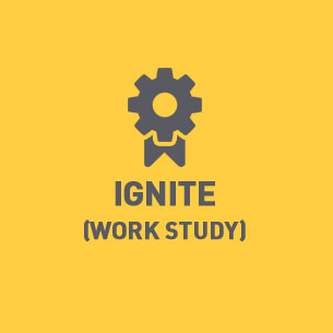 Ignite (Work Study)