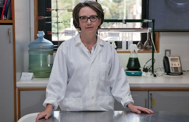 Arts professor Jennifer Willet has been awarded a Canada Research Chair in Art, Science and Ecology is shown in her lab.