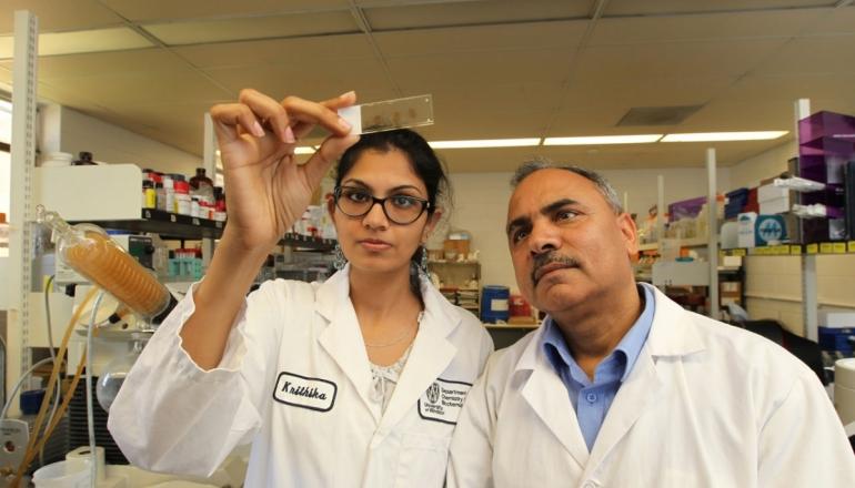 Krithika Muthukumaran and Dr. Siyaram Pandey shown in Dr. Pandey's lab.